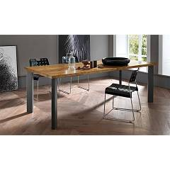 Fgf Free Fixed table l. 220 x 100
