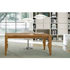Fgf Butterfly Fixed table l. 205 x 100
