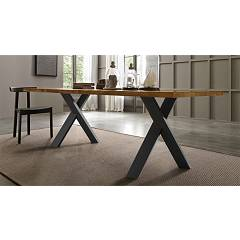 Fgf Walking Fixed table l. 220 x 100