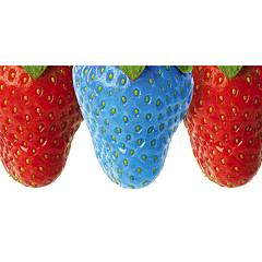 Pintdecor Fragola Puffo Picture cm. 140 x 70