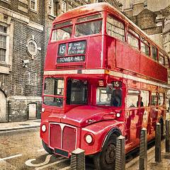 Pintdecor Red Bus Picture cm. 100 x 100