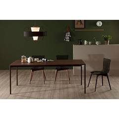 Photos 2: Tonin Casa ARIA WOOD 7225 Wooden and plastic chair